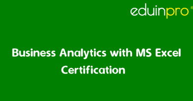 Business Analytics with Excel Certification | EduInPro